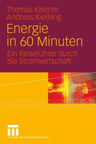 Energie in 60 Minuten: Ein Reiseführer durch die Stromwirtschaft (German Edition)